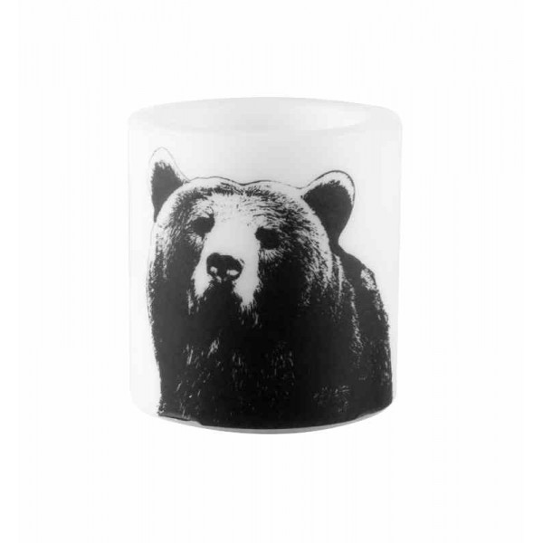 CANDLE - THE Bear